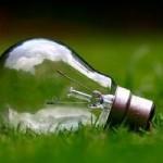 ampoule dans l'herbe
